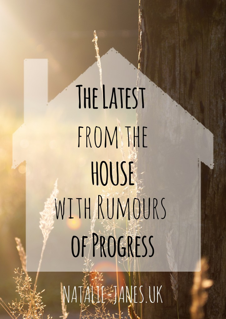 latest from the house - progress